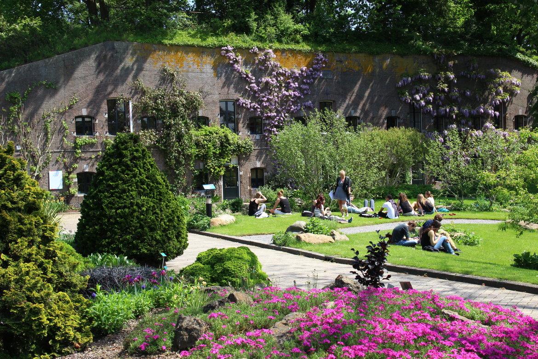 Botanische-tuin-en-weeshuismuseum